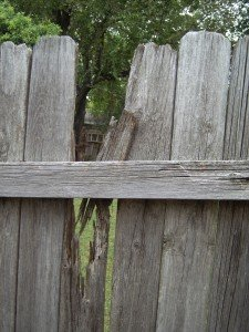 Damaged Wood Privacy Fence