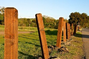 New fence post holes